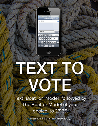 Text-To-Vote-Vertical