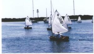 WBS_95_Opti_fleet
