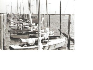 moored_boats2_WBS_1981